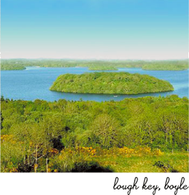Picture Of Lough Key